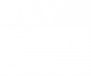FLYNOWE_logo_white_on_transparent_1200